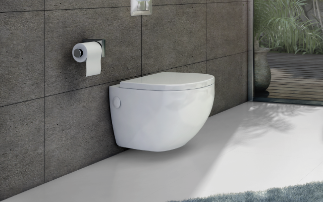 Bathroom Toilet Sanitaryware Products Accessories Neycer